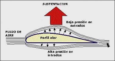 perfil_alar